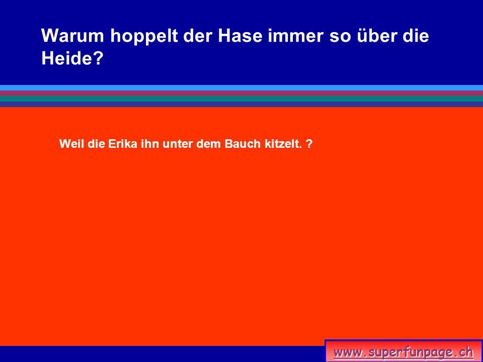 www.superfunpage.ch Warum hoppelt der Hase immer so über die Heide? Weil die Erika ihn unter dem Bauch kitzelt. ?