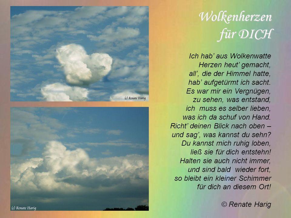 Wolkenherzen für DICH Ich hab aus Wolkenwatte Herzen heut gemacht, all, die der Himmel hatte, hab aufgetürmt ich sacht.