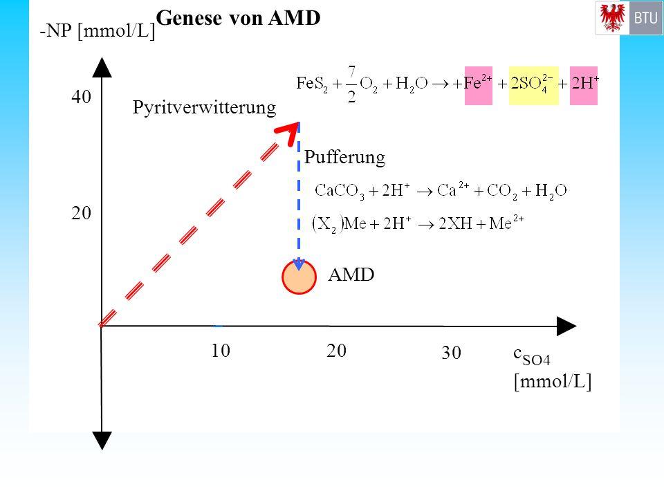 AMD -NP [mmol/L] c SO4 [mmol/L] 1020 30 20 40 Pyritverwitterung Pufferung Genese von AMD