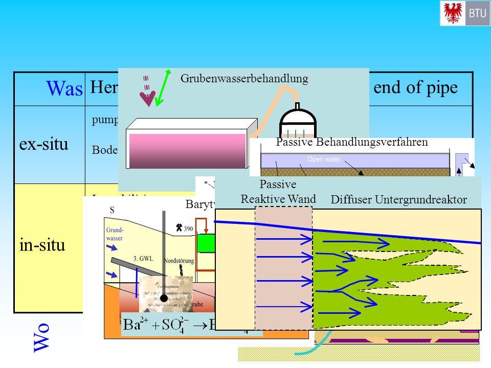 HerdbehandlungPfadbehandlung / end of pipe ex-situ in-situ Bodenaushub pump and treat Passive Verfahren zur AMD- Behandlung Immobilisierung, Einkapsel