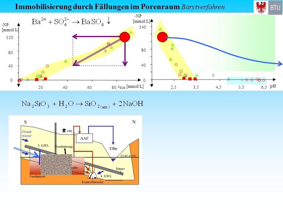 0 40 80 120 -NP [mmol/L] 20406080 c SO4 [mmol/L] Immobilisierung durch Fällungen im Porenraum Barytverfahren