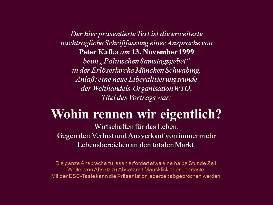 Der hier präsentierte Text ist die erweiterte nachträgliche Schriftfassung einer Ansprache von Peter Kafka am 13. November 1999 beim Politischen Samst