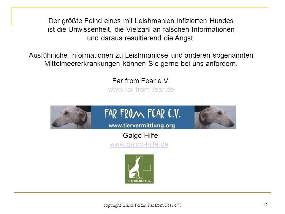 copyright Ulrike Feifar, Far from Fear e.V. 12 Der größte Feind eines mit Leishmanien infizierten Hundes ist die Unwissenheit, die Vielzahl an falsche