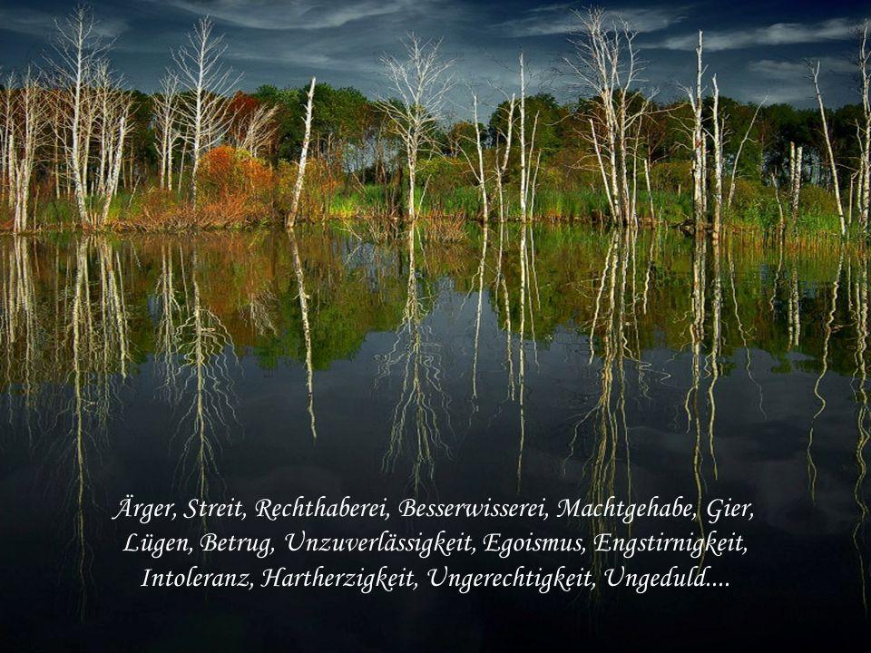 Ärger, Streit, Rechthaberei, Besserwisserei, Machtgehabe, Gier, Lügen, Betrug, Unzuverlässigkeit, Egoismus, Engstirnigkeit, Intoleranz, Hartherzigkeit, Ungerechtigkeit, Ungeduld....