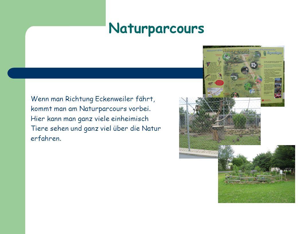 Naturparcours Wenn man Richtung Eckenweiler fährt, kommt man am Naturparcours vorbei.