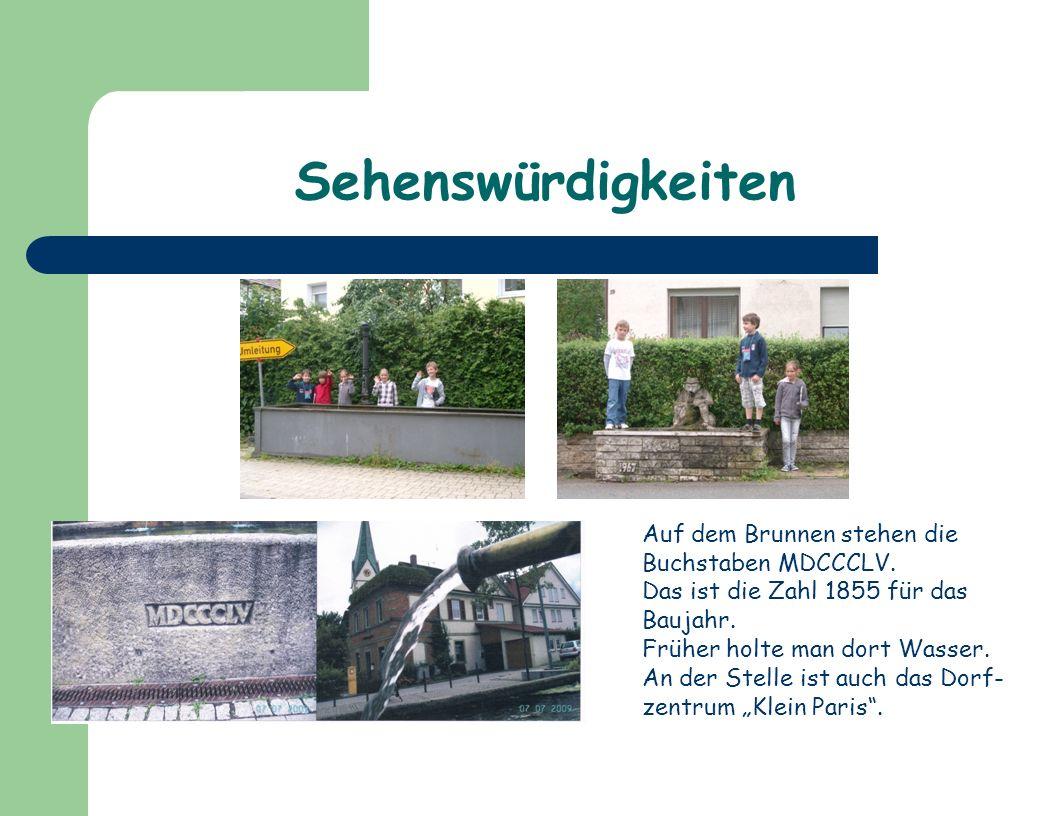 Interviews mit Ergenzinger Bürgern Unsere Fragen an die Ergenzinger Bürger: 1.