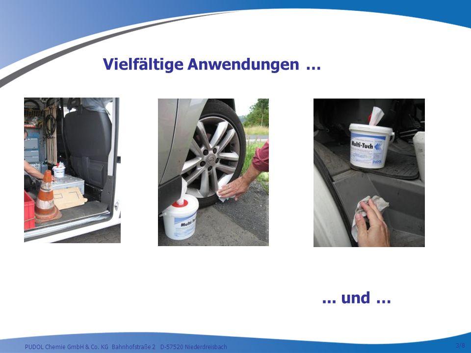 PUDOL Chemie GmbH & Co.KG Bahnhofstraße 2 D-57520 Niederdreisbach...