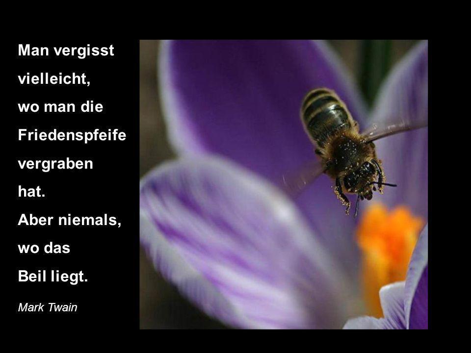 Im Alter bereut man vor allem die Sünden, die man NICHT begangen hat. Willam Somerset Maugham
