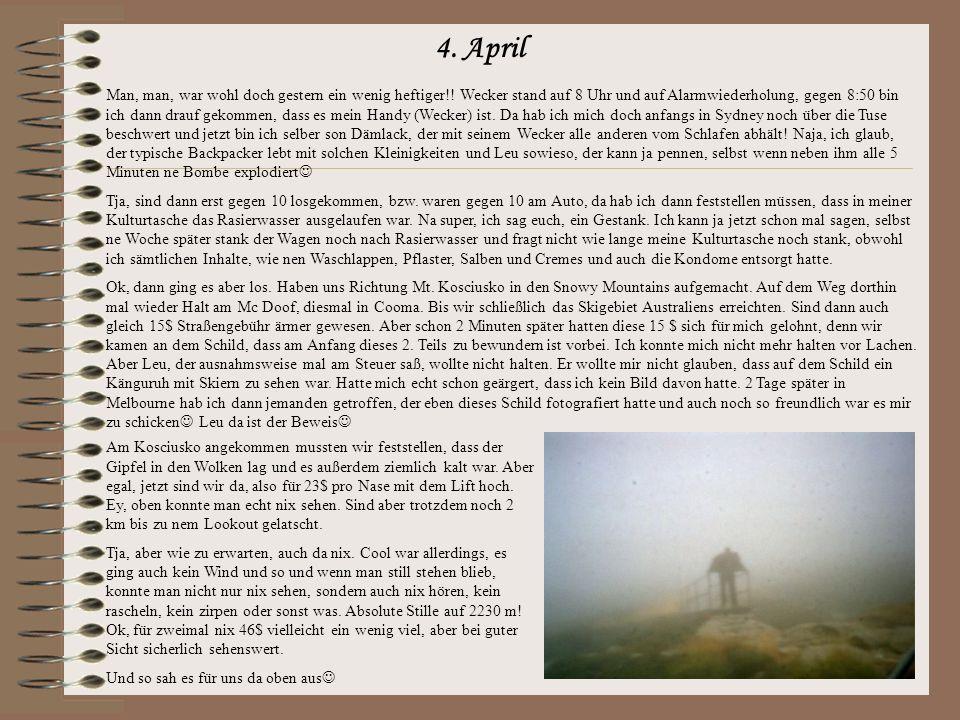 4.April Man, man, war wohl doch gestern ein wenig heftiger!.