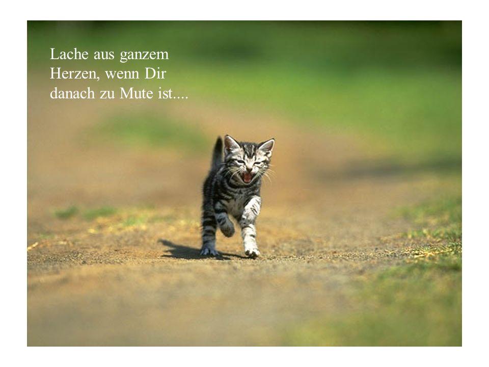 Lache aus ganzem Herzen, wenn Dir danach zu Mute ist....