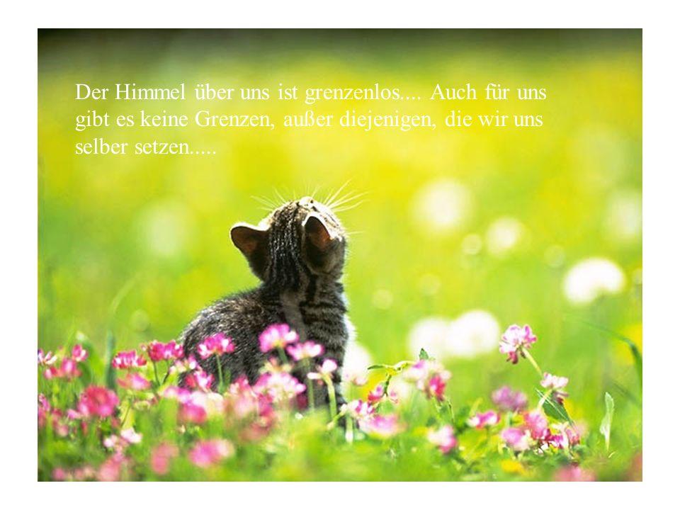 Der Himmel über uns ist grenzenlos.... Auch für uns gibt es keine Grenzen, außer diejenigen, die wir uns selber setzen.....