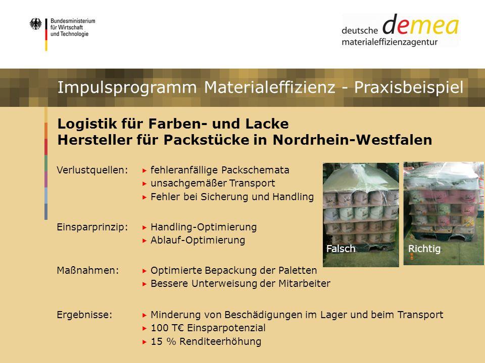 Impulsprogramm Materialeffizienz Logistik für Farben- und Lacke Hersteller für Packstücke in Nordrhein-Westfalen Verlustquellen: fehleranfällige Packs