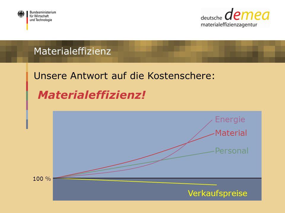 Impulsprogramm Materialeffizienz Unsere Antwort auf die Kostenschere: Material Verkaufspreise Personal Energie 100 % Materialeffizienz! Materialeffizi