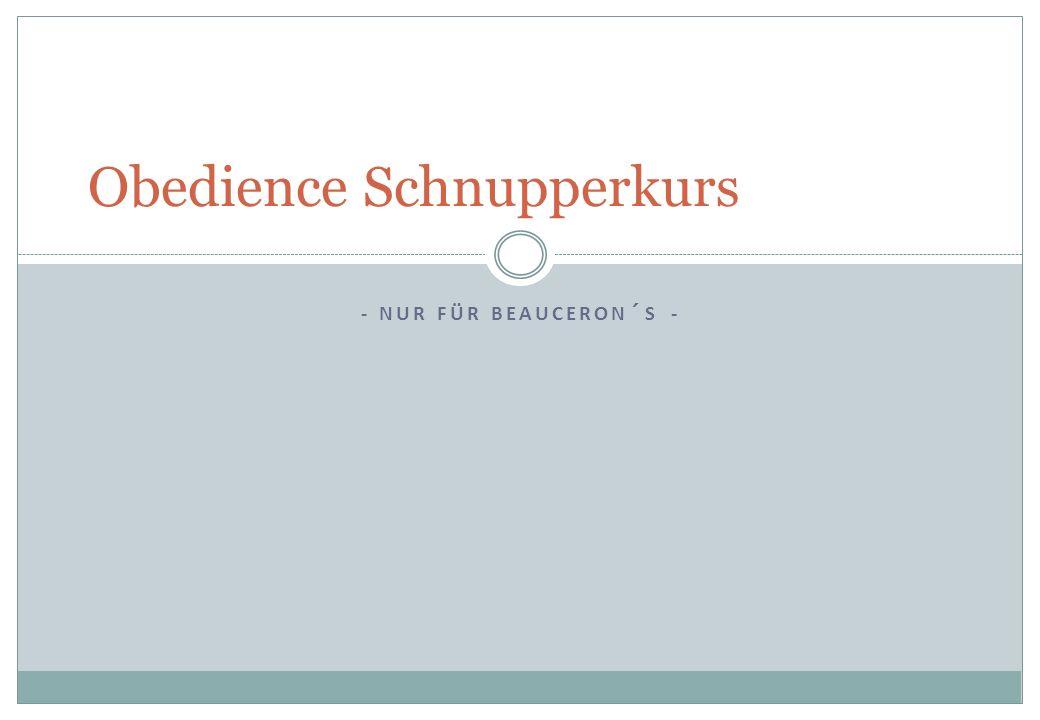 - NUR FÜR BEAUCERON´S - Obedience Schnupperkurs