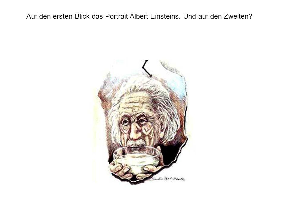 Auf den ersten Blick das Portrait Albert Einsteins. Und auf den Zweiten?