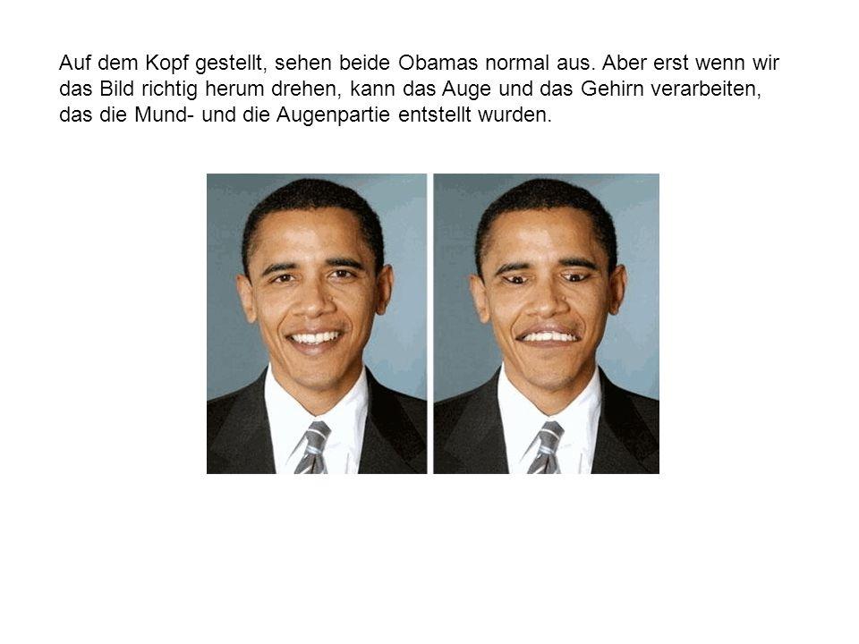 Auf dem Kopf gestellt, sehen beide Obamas normal aus.