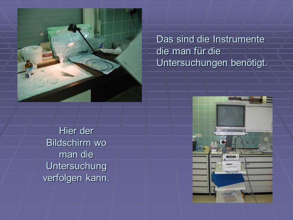 Hier der Bildschirm wo man die Untersuchung verfolgen kann. Das sind die Instrumente die man für die Untersuchungen benötigt.