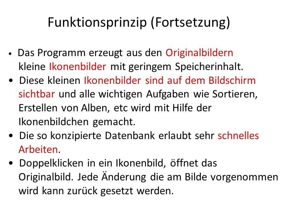 Funktionsprinzip (Fortsetzung) Das Programm erzeugt aus den Originalbildern kleine Ikonenbilder mit geringem Speicherinhalt. Diese kleinen Ikonenbilde