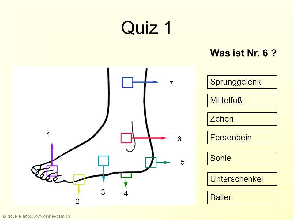 Quiz 1 Bildquelle: http://www.winkler-osm.ch Was ist Nr.