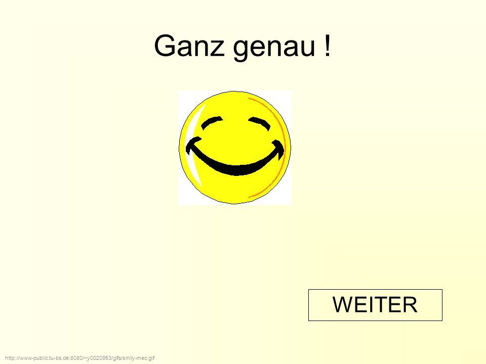 Ganz genau ! http://www-public.tu-bs.de:8080/~y0020953/gifs/smily-mec.gif WEITER