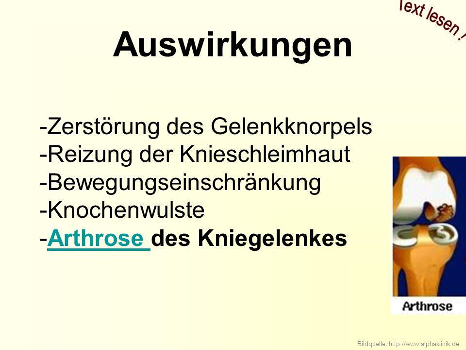 Auswirkungen -Zerstörung des Gelenkknorpels -Reizung der Knieschleimhaut -Bewegungseinschränkung -Knochenwulste -Arthrose des KniegelenkesArthrose Bildquelle: http://www.alphaklinik.de