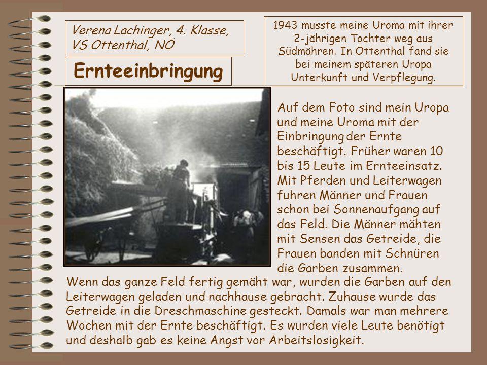 Verena Lachinger, 4. Klasse, VS Ottenthal, NÖ Ernteeinbringung 1943 musste meine Uroma mit ihrer 2-jährigen Tochter weg aus Südmähren. In Ottenthal fa