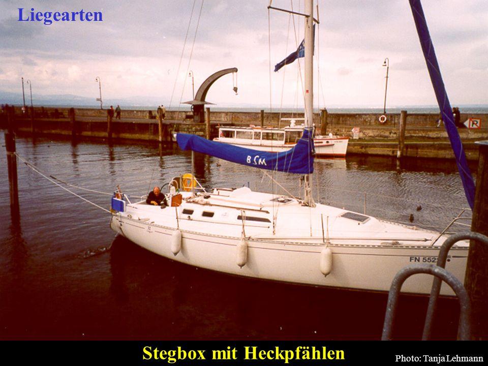 52 Stegbox mit Heckpfählen Photo: Tanja Lehmann Liegearten
