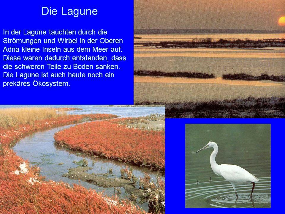 Der Schutz der Lagune Die Inseln wurden bei Hochwasser oft überschwemmt, weshalb sie vor der Völkerwanderung auch nie besiedelt waren.