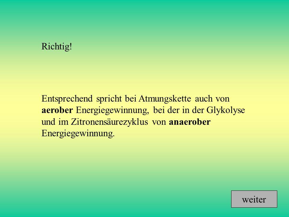 Richtig! Entsprechend spricht bei Atmungskette auch von aerober Energiegewinnung, bei der in der Glykolyse und im Zitronensäurezyklus von anaerober En