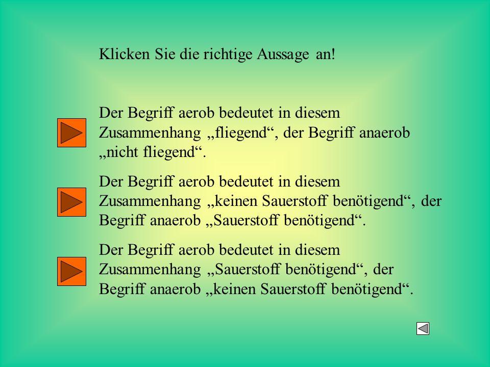 Klicken Sie die richtige Aussage an! Der Begriff aerob bedeutet in diesem Zusammenhang fliegend, der Begriff anaerob nicht fliegend. Der Begriff aerob