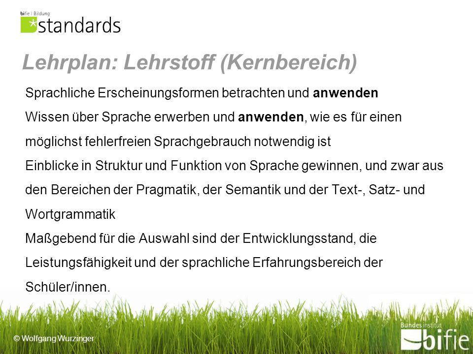 © Wolfgang Wurzinger Didaktische Konzepte Es gibt keine verbindliche Grundlage für den Grammatikunterricht, lediglich verschiedene Modelle.