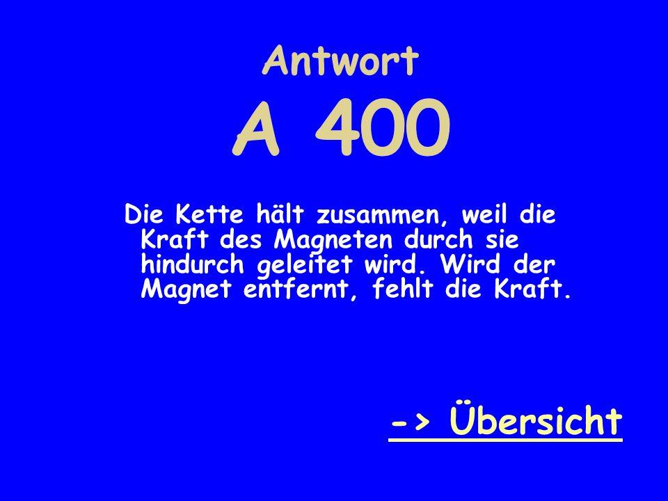 E 500 Warum darf man Speicherkarten oder Computerfestplatten nicht in die Nähe von Magneten bringen.