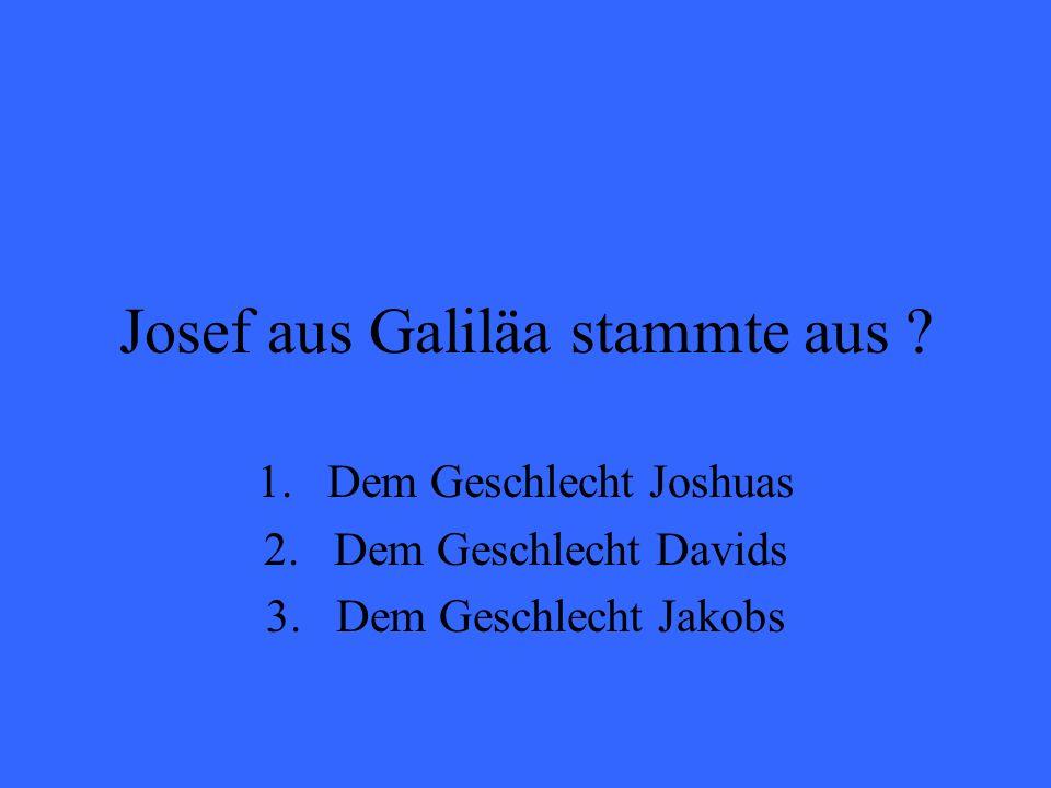 Josef aus Galiläa stammte aus ? 1.Dem Geschlecht Joshuas 2.Dem Geschlecht Davids 3.Dem Geschlecht Jakobs