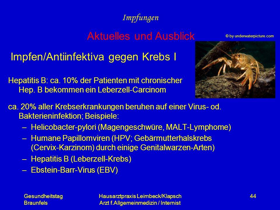 Gesundheitstag Braunfels Hausarztpraxis Leimbeck/Klapsch Arzt f.Allgemeinmedizin / Internist 44 Impfen/Antiinfektiva gegen Krebs I Hepatitis B: ca. 10