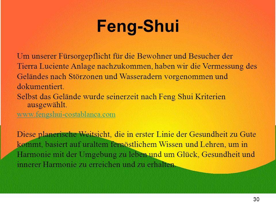 30 Feng-Shui Um unserer Fürsorgepflicht für die Bewohner und Besucher der Tierra Luciente Anlage nachzukommen, haben wir die Vermessung des Geländes n