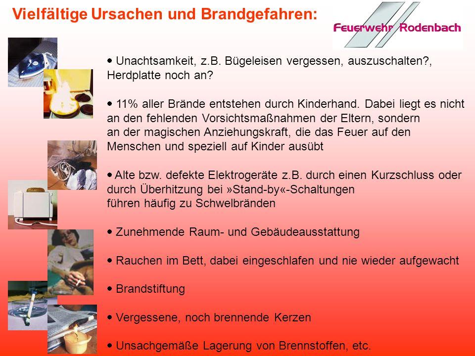 Ca. 240.000 registrierte Brände pro Jahr in Deutschland Ca. 3,6 Mrd. Euro Sachschaden in den Privathaushalten Pro Jahr ca. 800 Tote bei Bränden in Woh