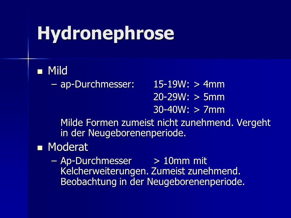 Hydronephrose Mild Mild –ap-Durchmesser: 15-19W: > 4mm 20-29W: > 5mm 20-29W: > 5mm 30-40W: > 7mm 30-40W: > 7mm Milde Formen zumeist nicht zunehmend. V