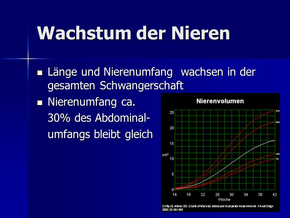 Wachstum der Nieren Länge und Nierenumfang wachsen in der gesamten Schwangerschaft Länge und Nierenumfang wachsen in der gesamten Schwangerschaft Nier