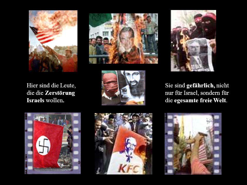 Schalten Sie den Fernseher ein – ein Scheik bietet an: Segen allen, die eine Kugel aufheben um sie einen Juden in den Kopf zu schießen.