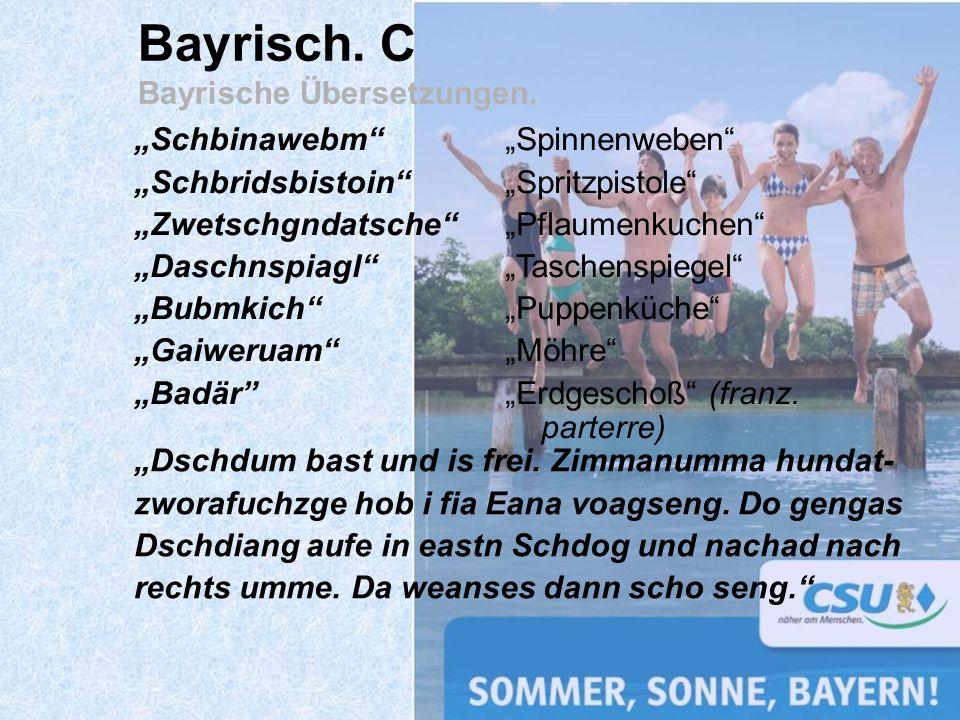 Bayrisch. C Bayrische Übersetzungen. Schbinawebm Schbridsbistoin Zwetschgndatsche Daschnspiagl Bubmkich Gaiweruam Badär Spinnenweben Spritzpistole Pfl
