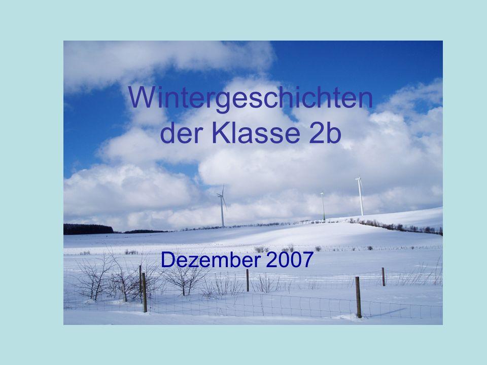 Wintergeschichten der Klasse 2b Dezember 2007