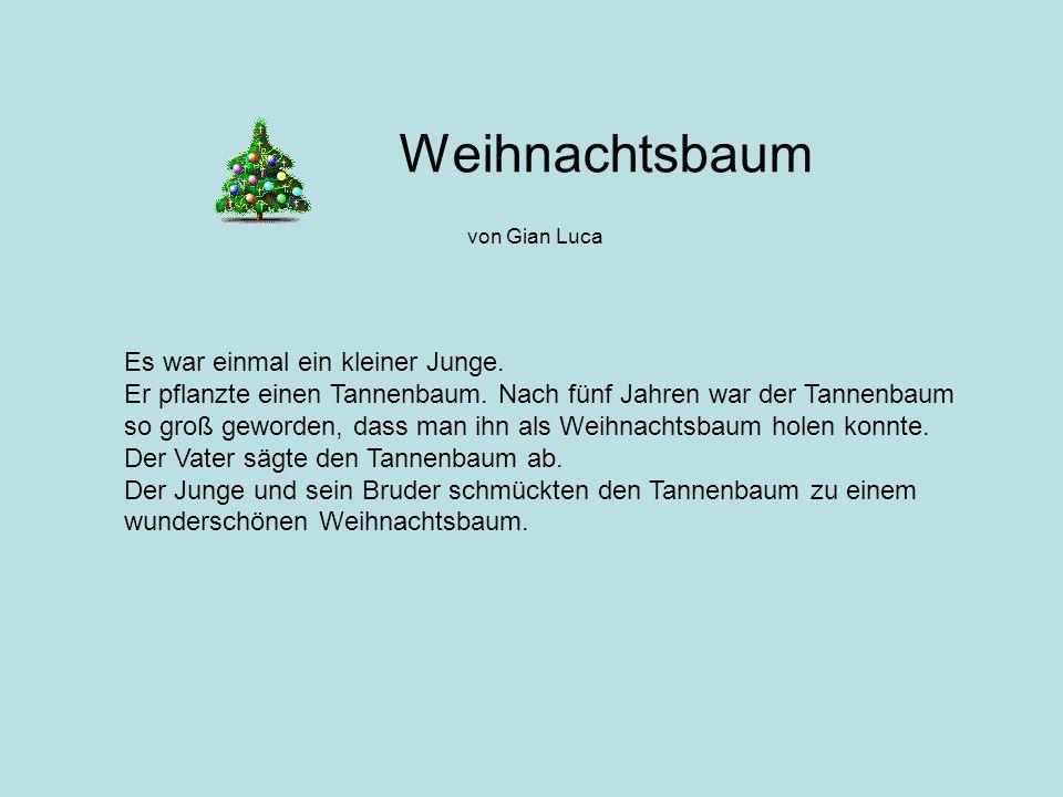Weihnachtsbaum von Gian Luca Es war einmal ein kleiner Junge. Er pflanzte einen Tannenbaum. Nach fünf Jahren war der Tannenbaum so groß geworden, dass