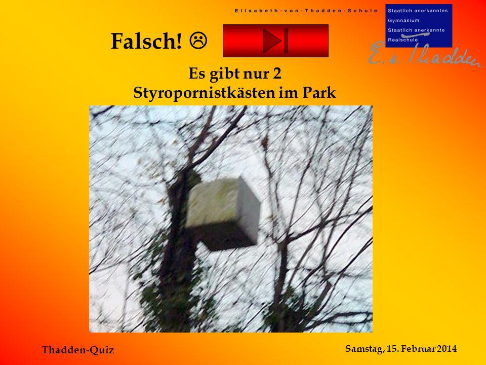 Samstag, 15. Februar 2014 Thadden-Quiz Es gibt nur 2 Styropornistkästen im Park Falsch!