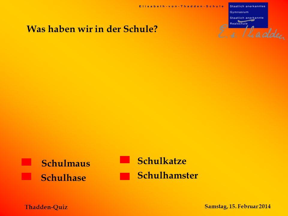 Samstag, 15. Februar 2014 Thadden-Quiz Schulmaus Schulhase Schulkatze Schulhamster Was haben wir in der Schule?