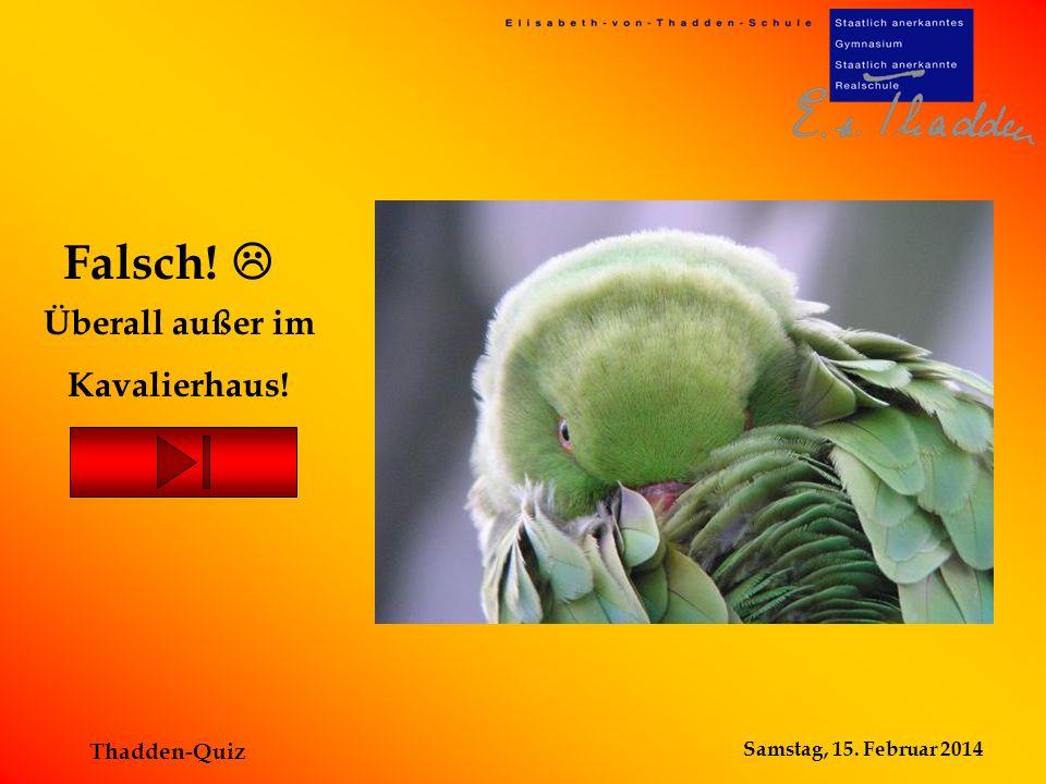 Samstag, 15. Februar 2014 Thadden-Quiz Dort sind keine Reptilien zu sehen Falsch!