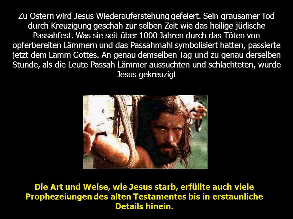 Prophezeiung: Da er gestraft und gemartert ward, tat er seinen Mund nicht auf wie ein Lamm, das zur Schlachtbank geführt wird, und wie ein Schaf, das verstummt vor seinem Scherer und seinen Mund nicht auftut.