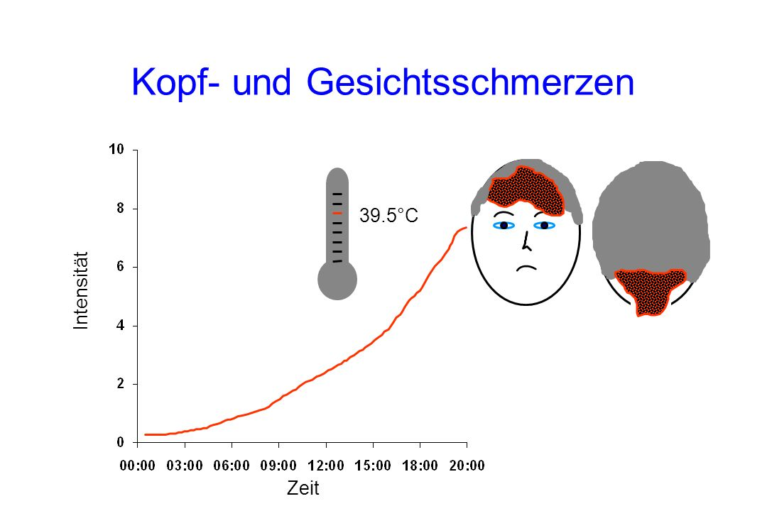 39.5°C Kopf- und Gesichtsschmerzen Intensität Zeit