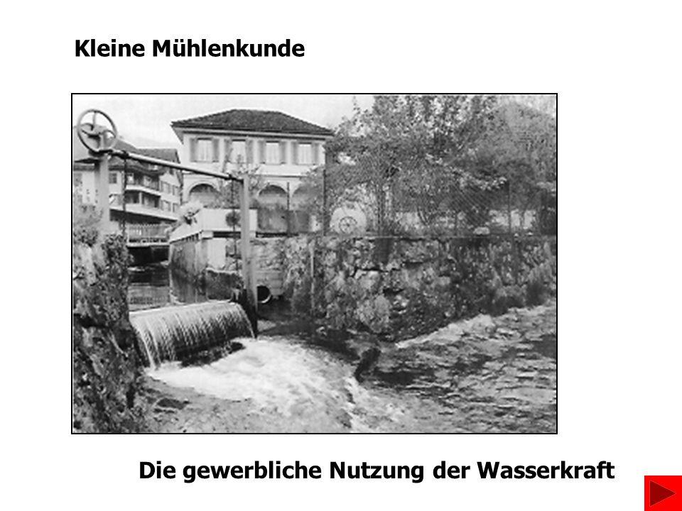 Die gewerbliche Nutzung der Wasserkraft Kleine Mühlenkunde