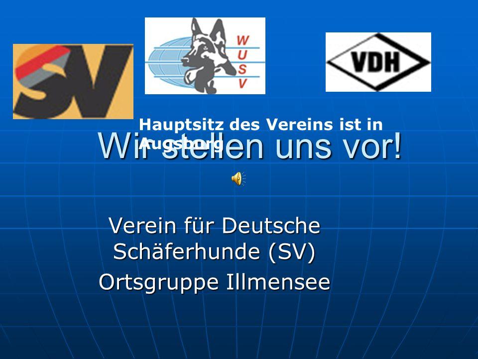 Wir stellen uns vor! Verein für Deutsche Schäferhunde (SV) Ortsgruppe Illmensee Hauptsitz des Vereins ist in Augsburg