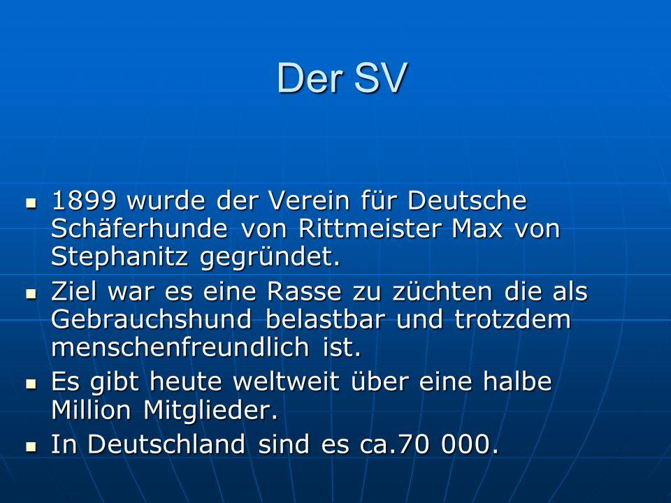 Der SV 1899 wurde der Verein für Deutsche Schäferhunde von Rittmeister Max von Stephanitz gegründet. Ziel war es eine Rasse zu züchten die als Gebrauc